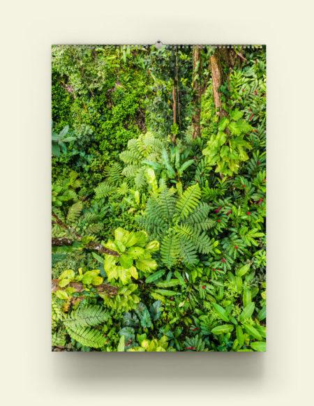 Calendrier A3 Premium / Tropiques