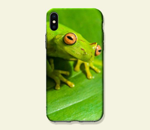 Coque smartphone Rainette amazonienne