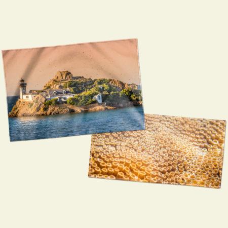 Plaids & serviettes de plage