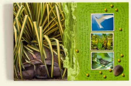 Tortue géante terrestre (Seychelles) - Carnet de voyage