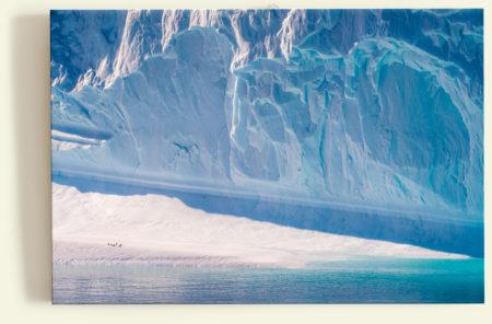 Sieste sur un iceberg (Antarctique)