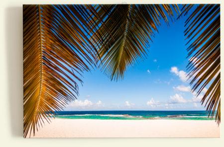 Plage paradisiaque (Petite-Terre, Guadeloupe)