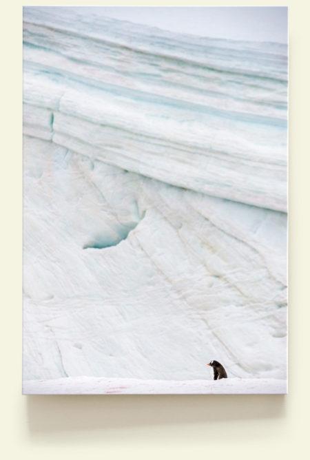 Seul au monde 1 (Antarctique)