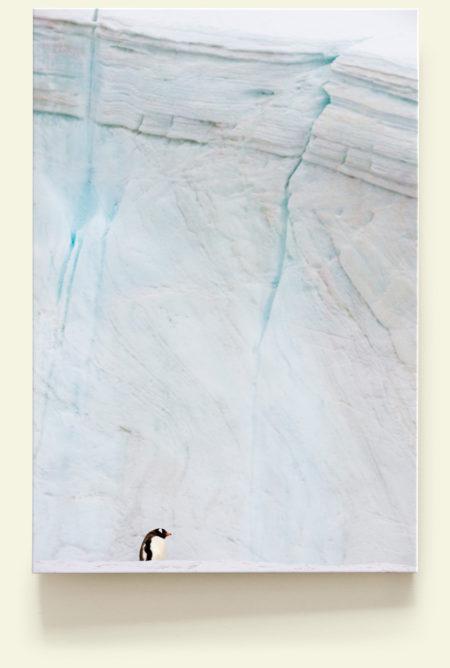 Seul au monde 2 (Antarctique)
